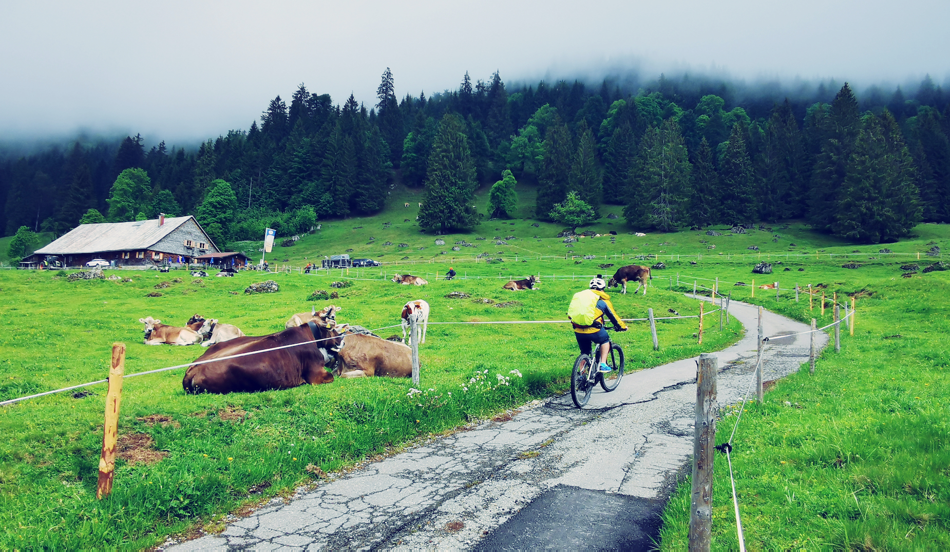 4-Day Alps E-Mountain Biking + Germany&Austria City tour